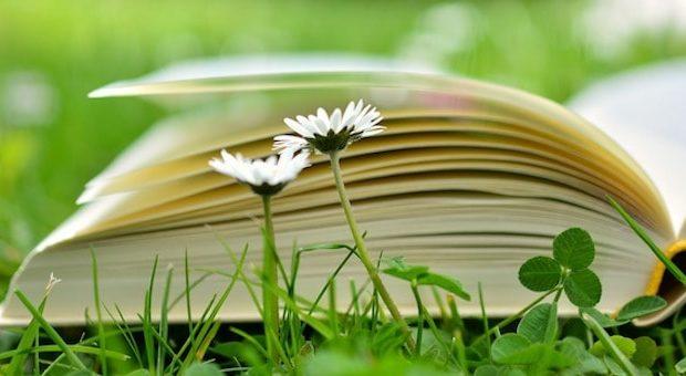 Libri prato da Pixabay