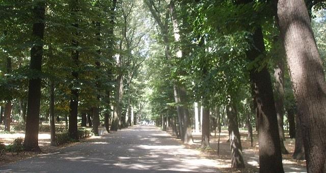 Parco delle Cascine a Firenze