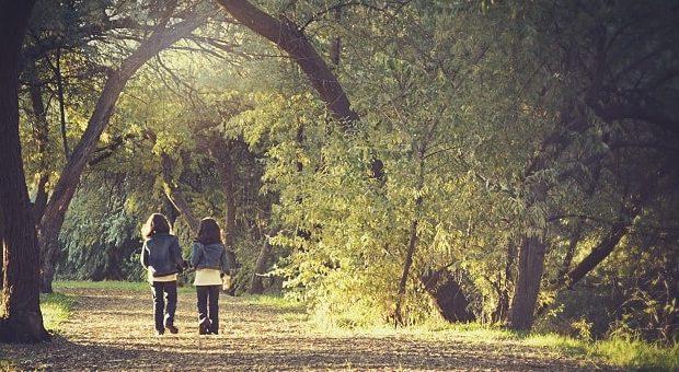 Bambini che passeggiano nel bosco