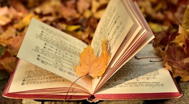 libro e foglie