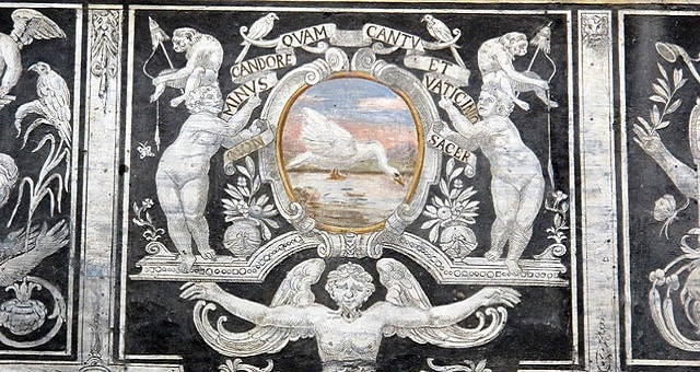 Palazzo di Bianca Cappello, particolare dei graffitti