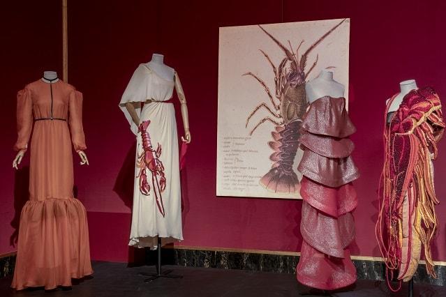 Animalia fashion a Palazzo Pitti