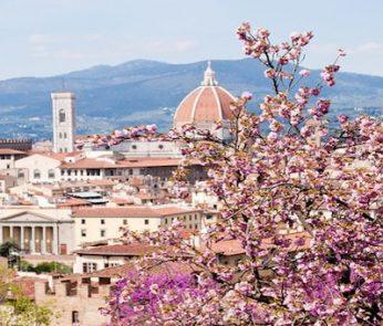 fiori di pesco a Firenze