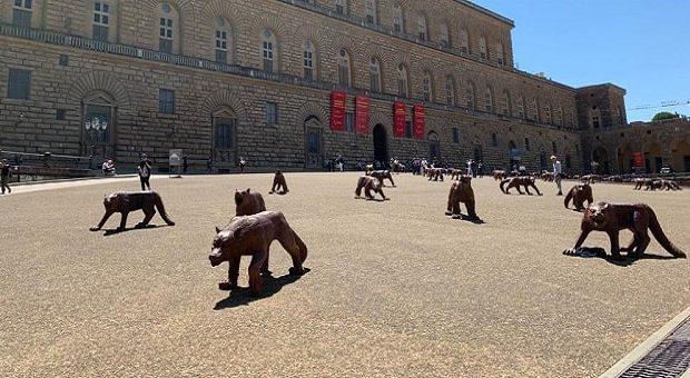 I lupi di Ruowang a Firenze